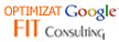 Optimizat Google de Fit Consulting